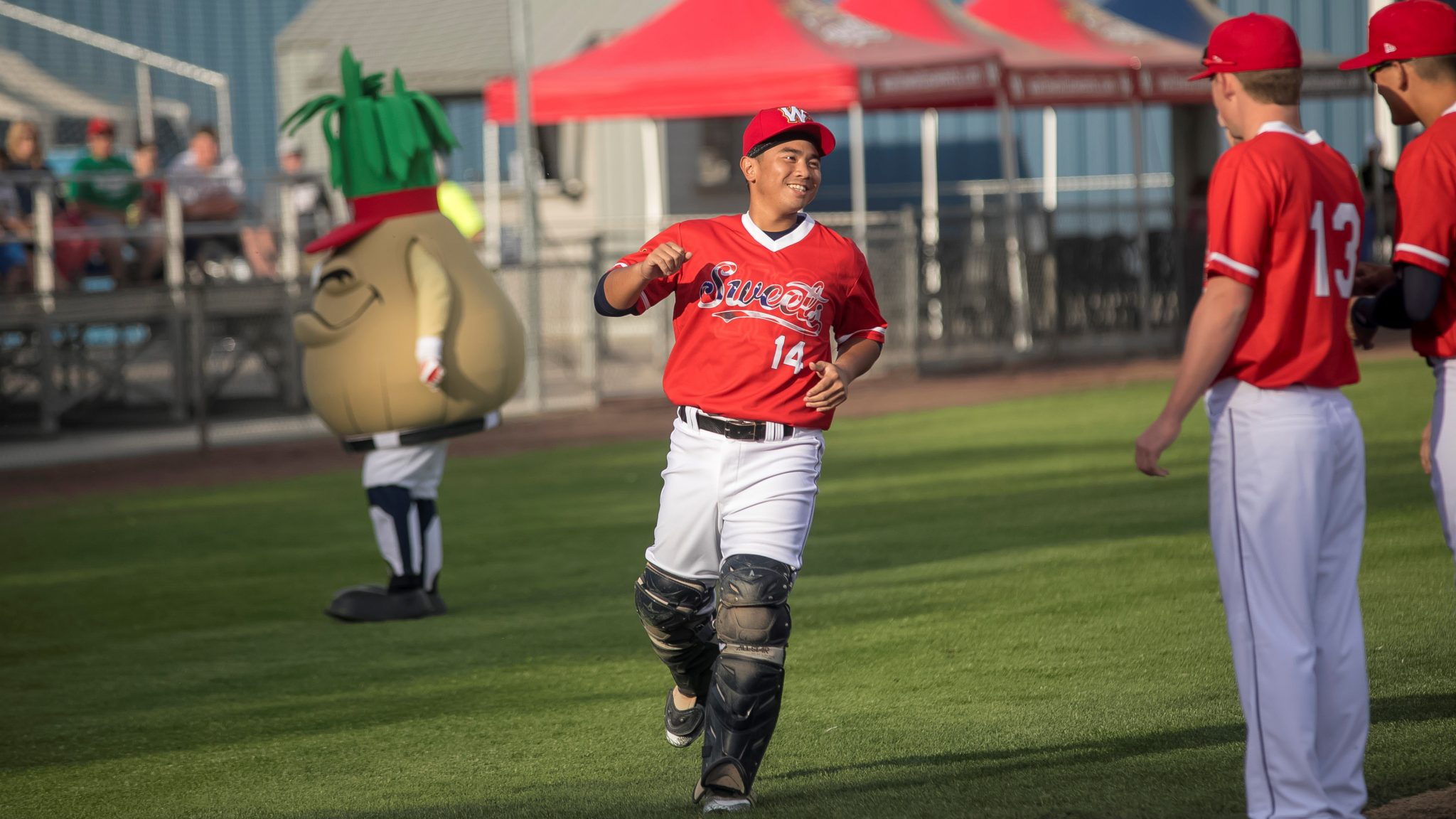 Press Releases - Walla Walla Sweets Baseball